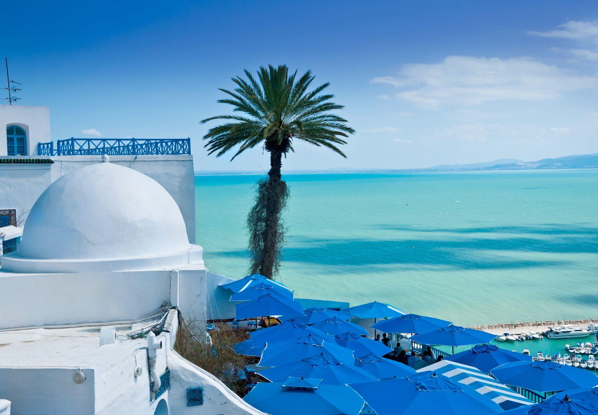 работа в тунисе